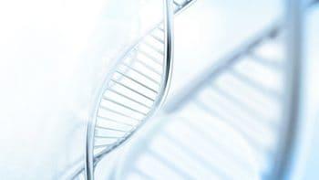 genetischeveranlagung-dna