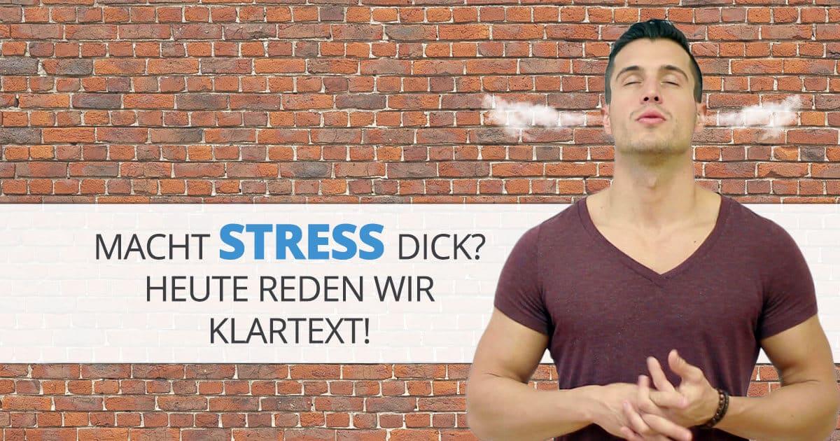 Macht Stress dick? Heute reden wir Klartext!