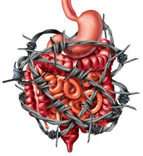 Symptome eines trägen darms