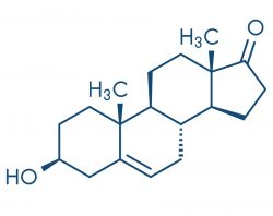 progesteron formel