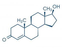 testosteron formel