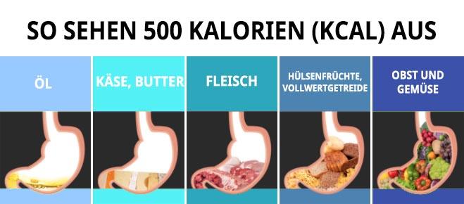 so sehen 500 kalorien aus