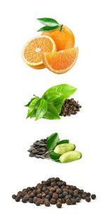den effektivsten natürlichen Fatburner zu entwickeln